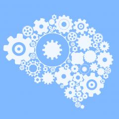 Quantum brain